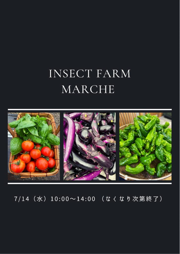 野菜販売風景